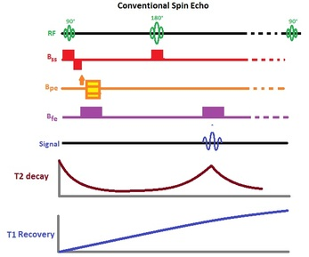 the convention spin echo is the most basic pulse sequence in the spin echo  family  it consists of a 90 degree rf pulse followed by a 180 degree  refocusing